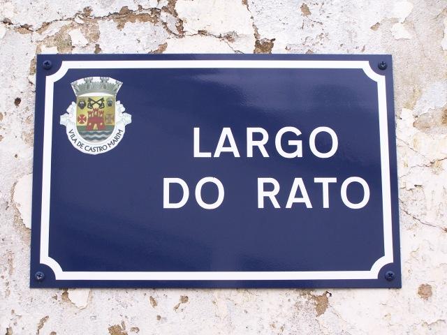 Foto de João Xavier